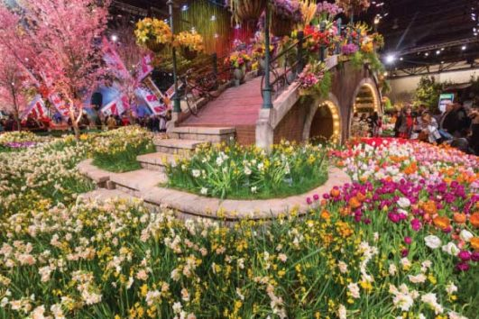 2020 Chelsea Flower Show Package